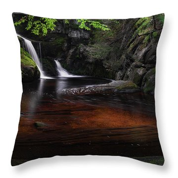 Throw Pillow featuring the photograph Enders Falls Spring by Bill Wakeley