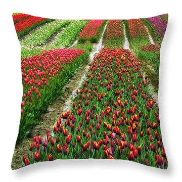 Endless Waves Of Tulips Throw Pillow