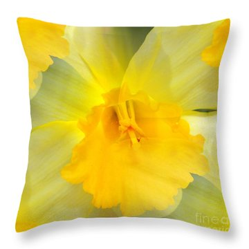 Endless Yellow Daffodil Throw Pillow