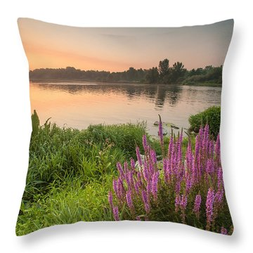 Energize Throw Pillow