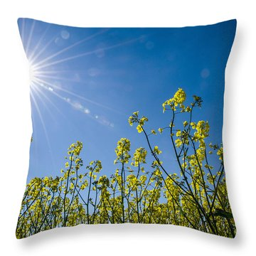 Throw Pillow featuring the photograph Energy by Kennerth and Birgitta Kullman