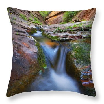 Energy Throw Pillow by Peter Coskun