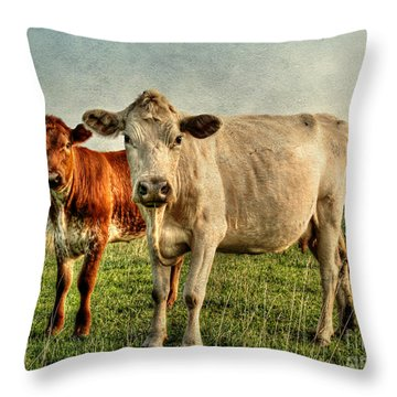 Engagement Session Throw Pillow by Darren Fisher