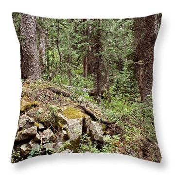 Engineer Pass In Colorado  Throw Pillow by Brett Pfister