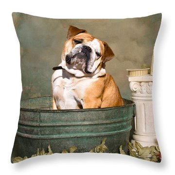 English Bulldog Portrait Throw Pillow by James BO  Insogna