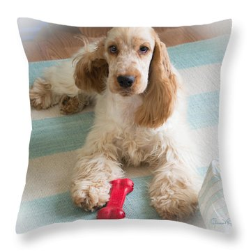 English Cocker Spaniel - Orange Roan Color Throw Pillow