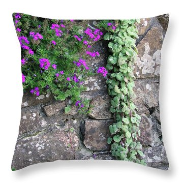 English Garden Wall Throw Pillow by Bev Conover