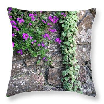 English Garden Wall Throw Pillow
