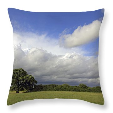 English Oak Under Stormy Skies Throw Pillow