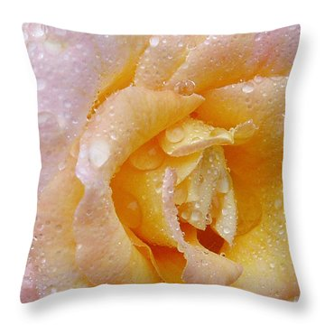 Throw Pillow featuring the photograph After The Rain by Susan Leonard
