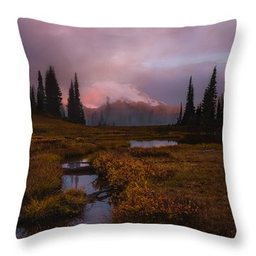 Engulfed II Throw Pillow