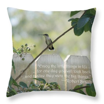 Throw Pillow featuring the photograph Hummingbird On Crepe Myrtle by Jayne Wilson