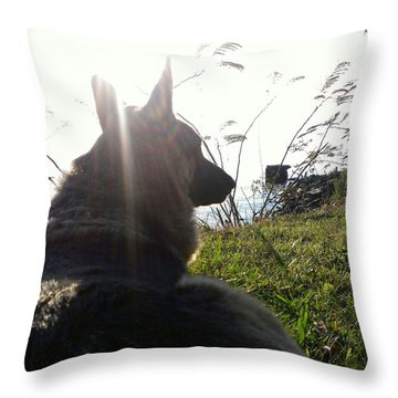 Throw Pillow featuring the photograph Enjoying The Day by Thomasina Durkay
