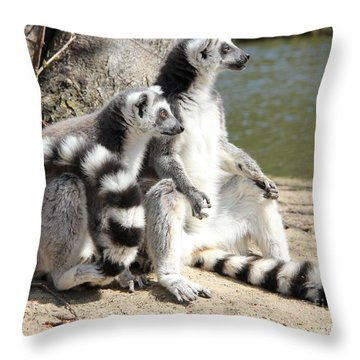 Enjoying The First Sun Throw Pillow