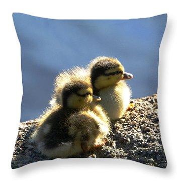 Enjoying The Sun Throw Pillow