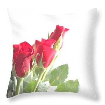 Enjoying The Sun Throw Pillow by Rachel Mirror