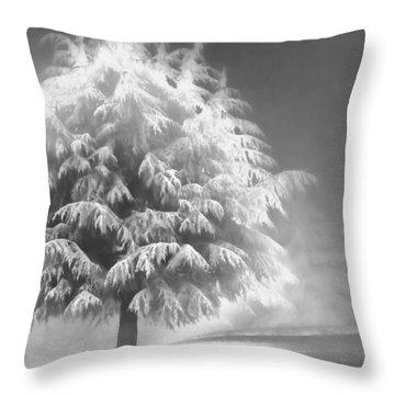 Enlightened Tree Throw Pillow by Don Schwartz