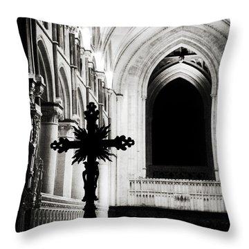 Throw Pillow featuring the photograph Enlightenment  by Lisa Knechtel
