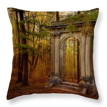 Enter Throw Pillow by Irene Suchocki