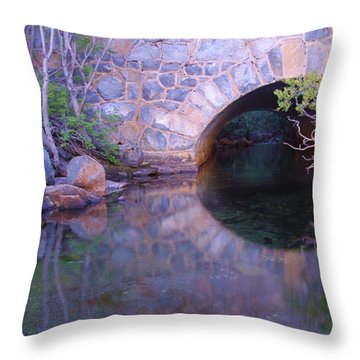 Enter The Tunnel Of Love  Throw Pillow