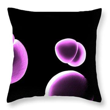 Enterococcus Bacteria Throw Pillow by Spencer Sutton
