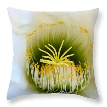 Throw Pillow featuring the photograph Enticing Echinopsis by Ruth Jolly