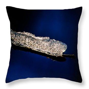 Entropy Throw Pillow by Alexander Senin
