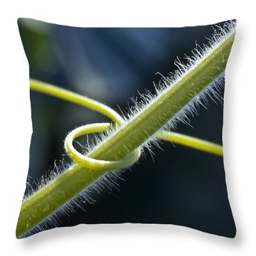 Entwined Throw Pillow by Heiko Koehrer-Wagner