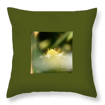 Throw Pillow featuring the photograph Enwrapped In Misty Shroud by Linda Shafer