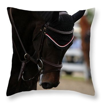 Equine Concentration Throw Pillow