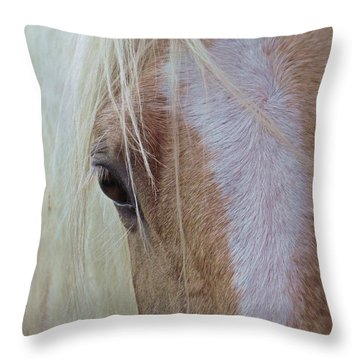 Equine Head Study Throw Pillow by Laurinda Bowling