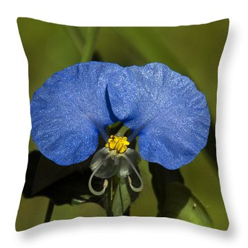 Erect Dayflower  Commelina Erecta Dsmf096 Throw Pillow