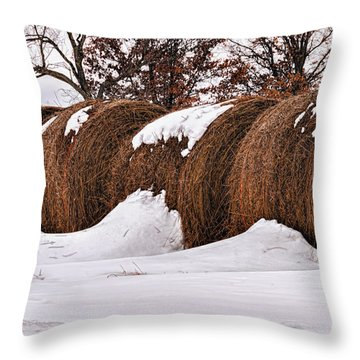 Erickson Road Hay Bales Throw Pillow