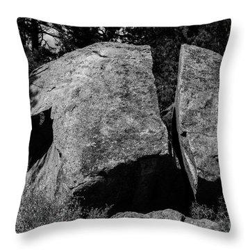 Erratic Throw Pillow