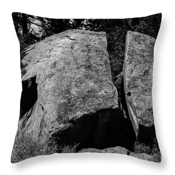 Erratic Throw Pillow
