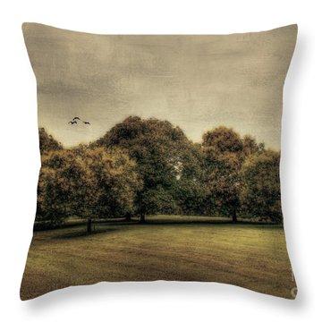 Es Una Hermosa Noche Throw Pillow by Darren Fisher