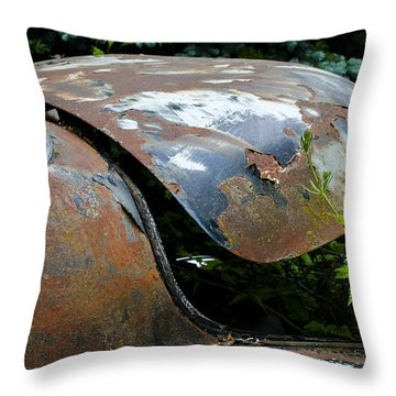 Escape Hatch Throw Pillow by Jean Noren