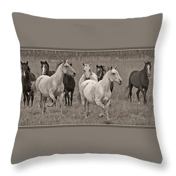 Throw Pillow featuring the photograph Escapees From A Lineup D8056 by Wes and Dotty Weber