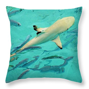 Escort  Throw Pillow by Jenny Rainbow