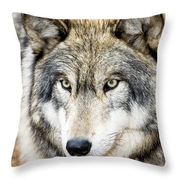 Essence Of Wolf Throw Pillow