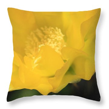 Essence Of Yellow Throw Pillow by Cathy Dee Janes