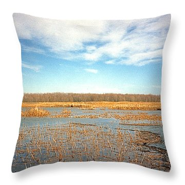 Throw Pillow featuring the photograph Etang by Marc Philippe Joly