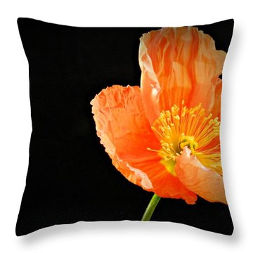 Eternal 2 Throw Pillow by Chalet Roome-Rigdon