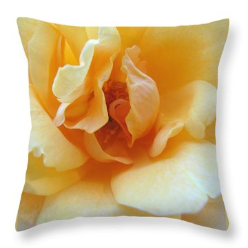 Throw Pillow featuring the photograph Lightness Of Being by Brooks Garten Hauschild