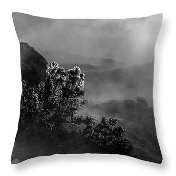 Ethereal Beauty In Black And White Throw Pillow