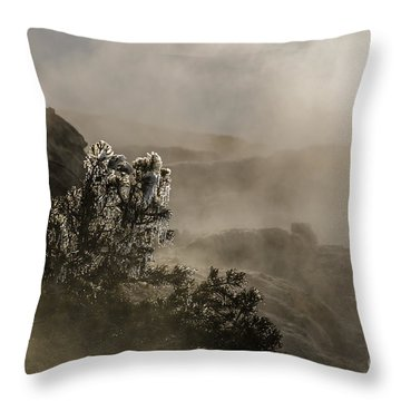 Ethereal Beauty Throw Pillow