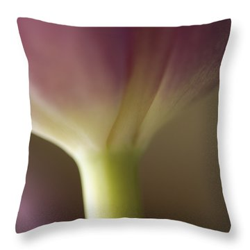 Ethereal Curvature Throw Pillow