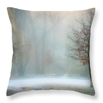 Misty Throw Pillows