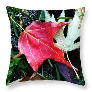 Ethereal Honor Throw Pillow