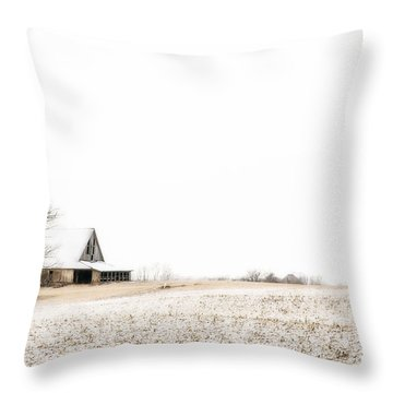 Ethereal Wintry Scene Throw Pillow